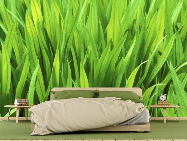 Iris Leaves 12' x 8' (3,66m x 2,44m)