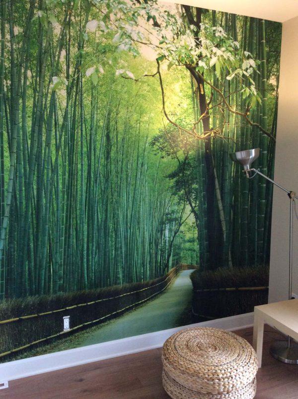 Sagano Bamboo Forest, Kyoto, Japan 15' x 9' (4,57m x 2,75m)