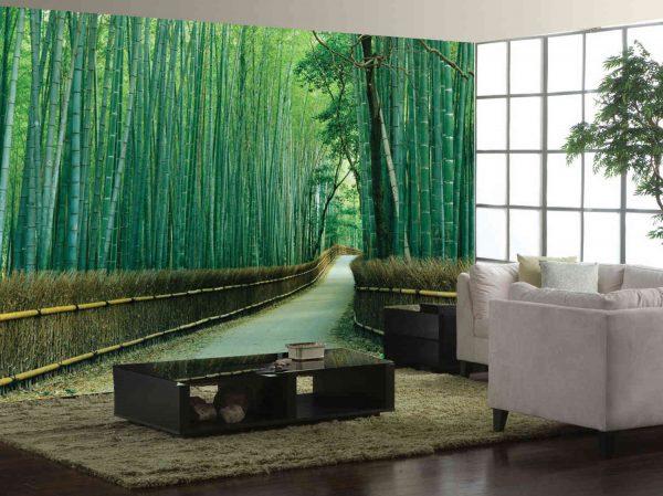 Sagano Bamboo Forest, Kyoto, Japan 12' x 8' (3,66m x 2,44m)