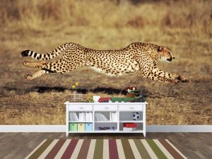 Cheetah Running 12' x 8' (3,66m x 2,44m)