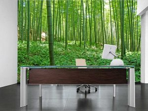 Bamboo Forest 12' x 8' (3,66m x 2,44m)