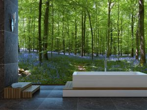 Bluebell Forest 12' x 8' (3,66m x 2,44m)