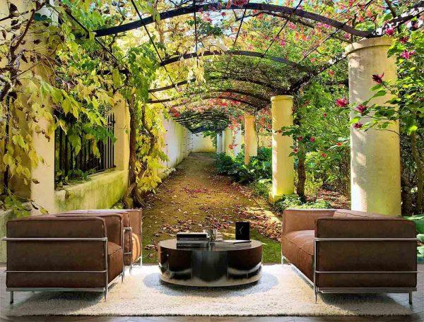 Garden in Western Cape, South Africa 12' x 8' (3,66m x 2,44m)