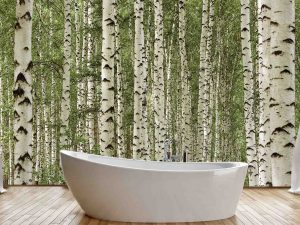 Birch Tree Forest 12' x 8' (3,66m x 2,44m)