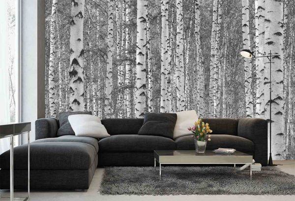 Birch Tree Forest (Black and White) 12' x 8' (3,66m x 2,44m)