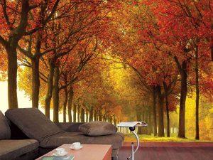 Autumn Colors 10.5' x 8' (3,20m x 2,44m)