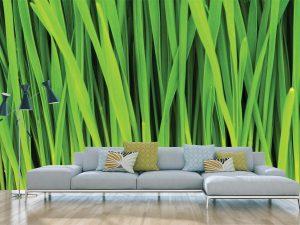 Grass 12' x 8' (3,66m x 2,44m)