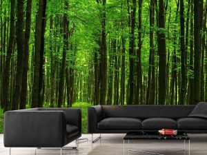 Walk in the Forest 12' x 9' (3,66m x 2,75m)
