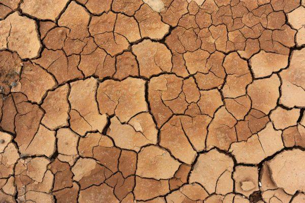 Dry Land 12' x 8' (3,66m x 2,44m)