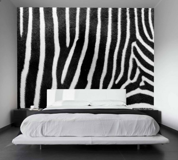Zebra Skin 10.5' x 8' (3,20m x 2,44m)
