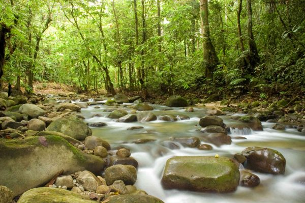 Mountain Stream 12' x 8' (3,66m x 2,44m)