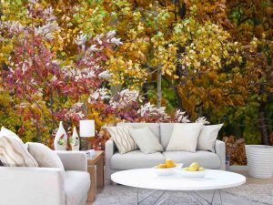 Autumn Leaves 12' x 8' (3,66m x 2,44m)