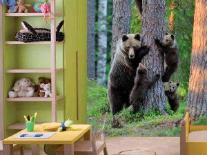 Bears & Company 6' x 9' (1,83m x 2,75m)