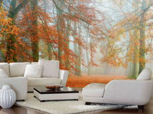 Autumn is Here 13.5' x 8' (4,11m x 2,44m)