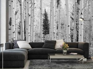 Aspen Forest, Elk Mountains, Colorado  (Black and White) 12' x 8' (3,66m x 2,44m)