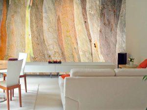 Eucalyptus Tree Bark 12' x 9' (3,66m x 2,75m)