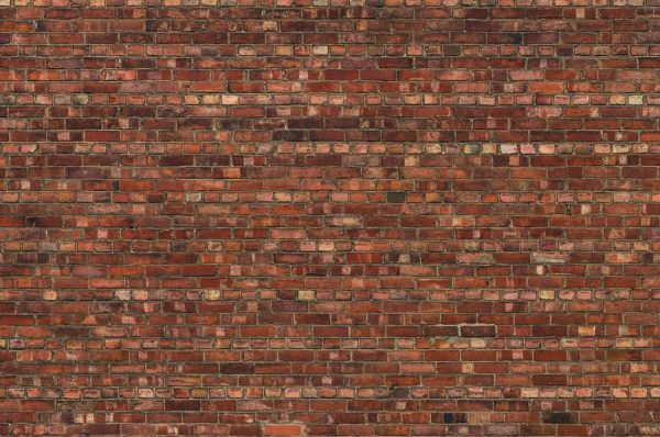 Old Brick Wall 12' x 8' (3,66m x 2,44m)