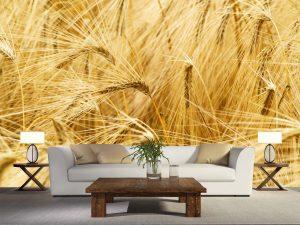 Wheat Field 12' x 9' (3,66m x 2,75m)