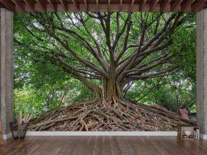 The Wisdom Tree 12' x 8' (3,66m x 2,44m)