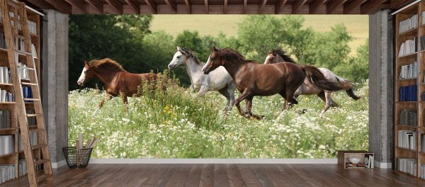 Herd of Running Horses 16.5' x 8' (5,03m x 2,44m)