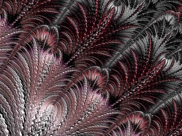 Fractal Feather 10.5' x 8' (3,2m x 2,44m)