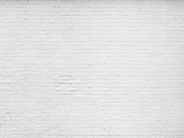 Old White Painted Brick Wall  12' x 9' (3,66m x 2,75m)