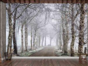 Frozen Birches 12' x 8' (3,66m x 2,44m)