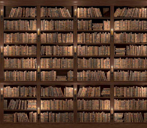 Old Bookshelf 10.5' x 8' (3,20m x 2,44m)