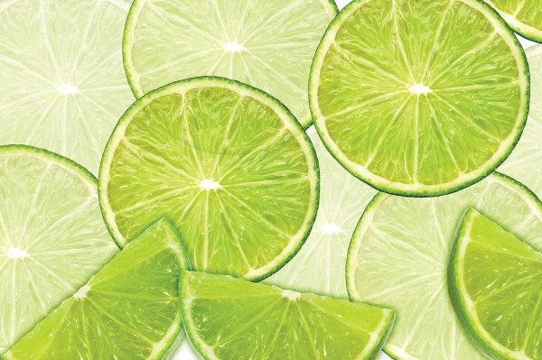 Limes 12' x 8' (3,66m x 2,44m)