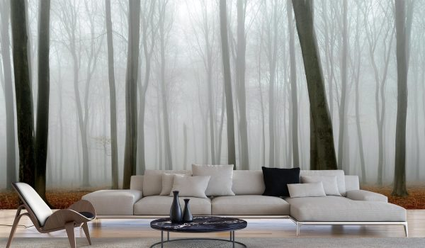 Beech Tree Forest on a Foggy Day 16.5' x 8' (5,03m x 2,44m)