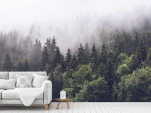 Coniferous Trees in the Fog 12' x 8' (3,66m x 2,44m)
