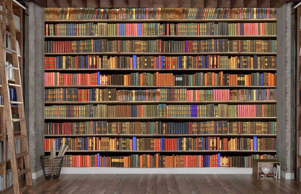 Library with Old Books 12' x 8' (3,66m x 2,44m)