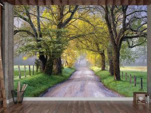 Country Road 12' x 8' (3,66m x 2,44m)