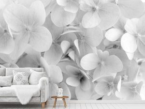 Hydrangea Flowers (Black and White) 12' x 8' (3,66m x 2,44m)
