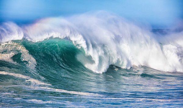 Ocean Wave 13.5' x 8' (4,11m x 2,44m)
