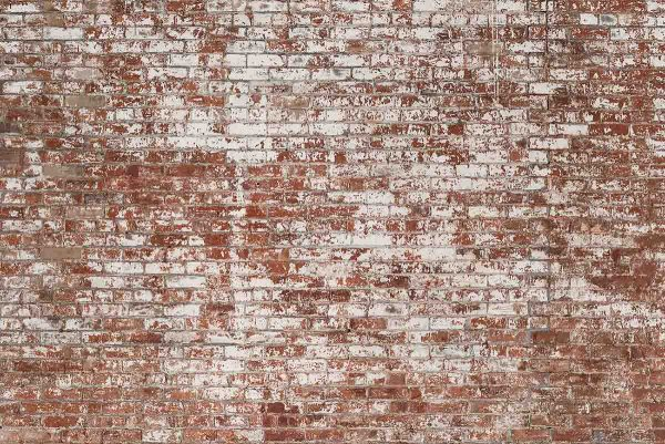 Grunge Red Brick 12' x 8' (3,66m x 2,44m)