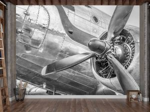 Vintage Douglas DC3 Airplane in Black and White 10.5' x 8' (3,20m x 2,44m)