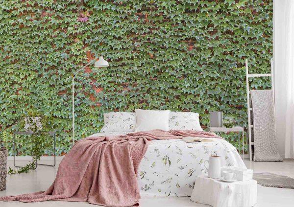 Ivy on Brick Wall 15' x 8' (4,57m x 2,44m)