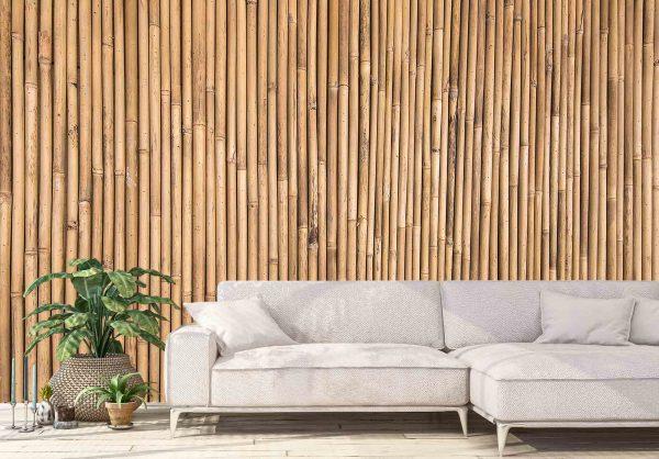 Bamboo Stems 10.5' (3,20m) x 9' (2,75m)