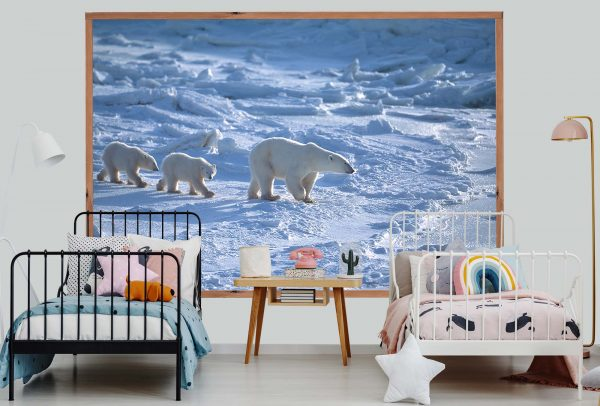 Polar Bears 7.5' x 5' (2,29m x 1,52m)
