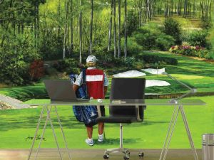 Somewhere in Golf Paradise 10.5' x 8' (3,20m x 2,44m)