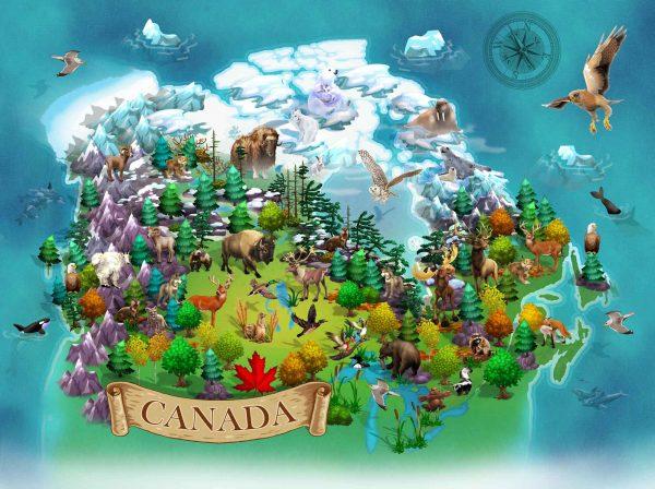 Canadian Wildlife Map 10.5' x 8' (3,20m x 2,44m)